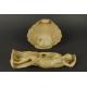 NARODZINY WENUS, alabaster, XVIII/ XIX w.